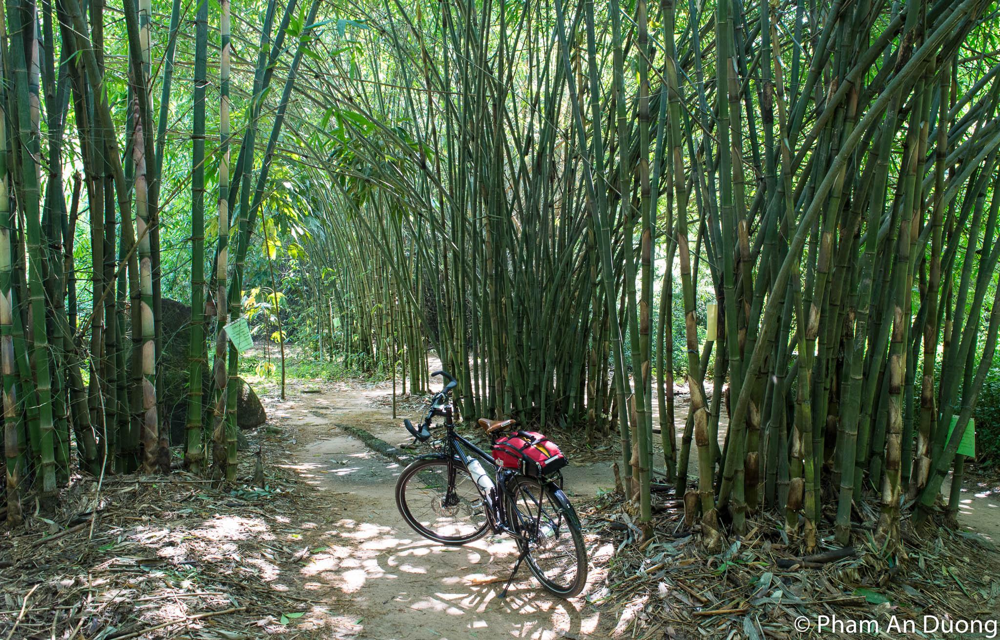 Phu An Bamboo village, Binh Duong